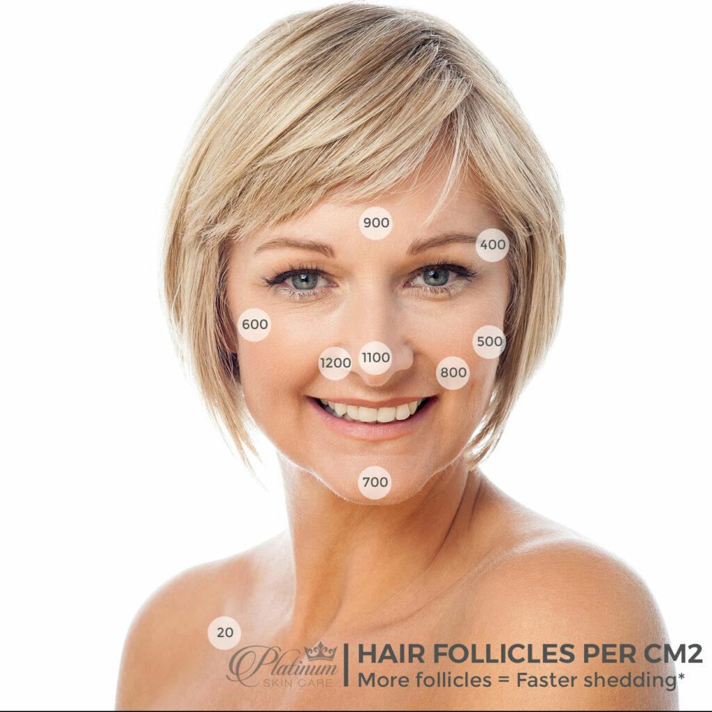 Hair Follicles per Square Centimeter